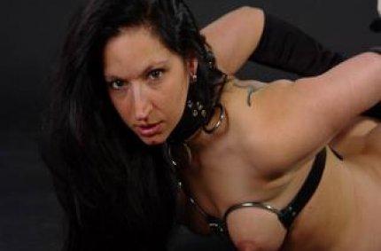 Profil von: Danina - tropfnasse muschi, free cam chat
